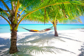 Traumstrand mit Palmen und Hängematte