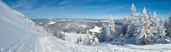 Winter im Schwarzwald am Feldberg